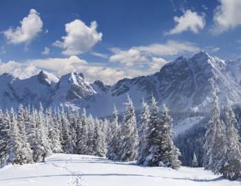 Summit Mountain Rentals Blog