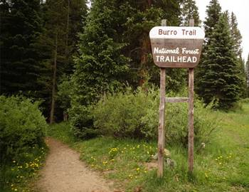 Hiking Burro Trail Breckenridge Colorado