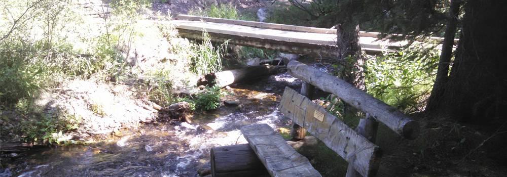 Hiking Burro Trail Breckenridge Colorado