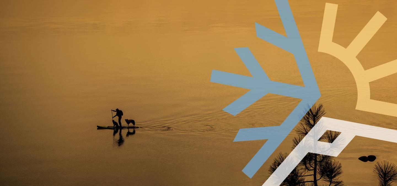Paddle Boarding Dog