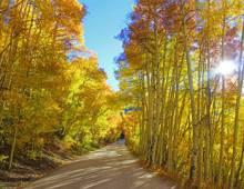 Boreas Pass Road