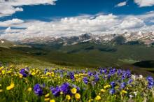 Colorado mountains in summer